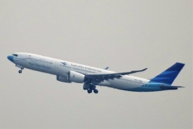 レドームさんが、羽田空港で撮影したガルーダ・インドネシア航空 A330-941の航空フォト(飛行機 写真・画像)