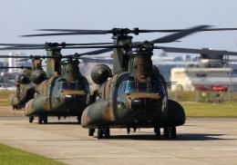 LOTUSさんが、八尾空港で撮影した陸上自衛隊 CH-47JAの航空フォト(飛行機 写真・画像)