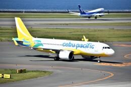MSN/PFさんが、中部国際空港で撮影したセブパシフィック航空 A320-271Nの航空フォト(飛行機 写真・画像)