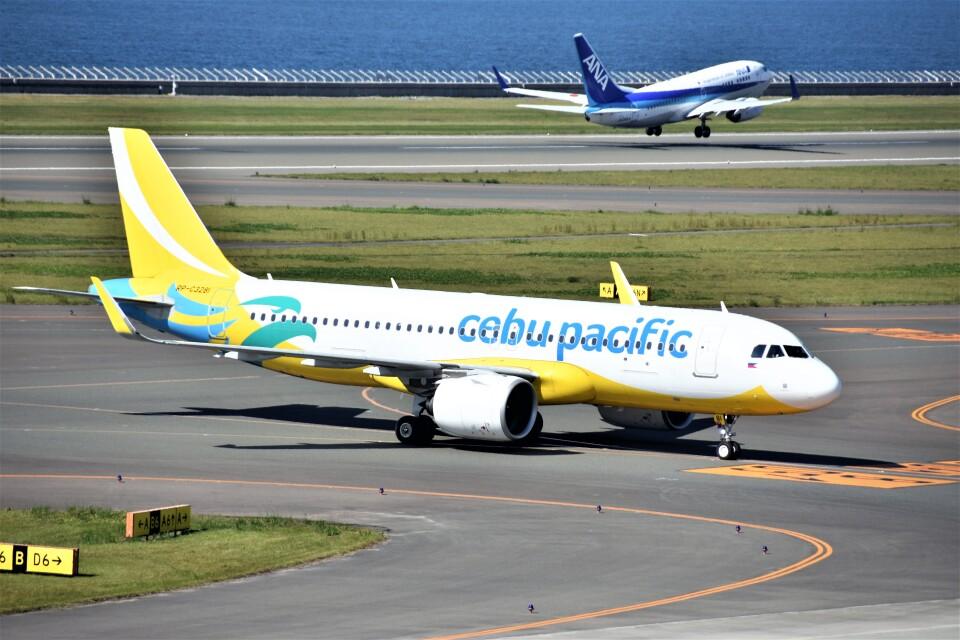MSN/PFさんのセブパシフィック航空 Airbus A320neo (RP-C3281) 航空フォト