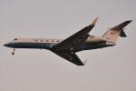 デルタおA330さんが、横田基地で撮影したアメリカ空軍 C-37A Gulfstream V (G-V)の航空フォト(飛行機 写真・画像)