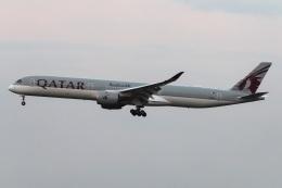 kan787allさんが、成田国際空港で撮影したカタール航空 A350-1041の航空フォト(飛行機 写真・画像)