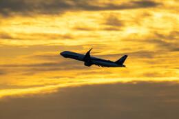 紫電さんが、羽田空港で撮影した全日空 A321-272Nの航空フォト(飛行機 写真・画像)