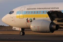 Hiro-hiroさんが、新潟空港で撮影したAIR DO 737-54Kの航空フォト(飛行機 写真・画像)
