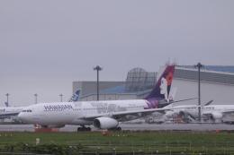 Mr.boneさんが、成田国際空港で撮影したハワイアン航空 A330-243の航空フォト(飛行機 写真・画像)
