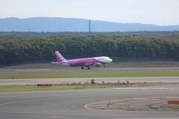 meijeanさんが、新千歳空港で撮影したピーチ A320-214の航空フォト(飛行機 写真・画像)