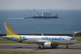 jutenLCFさんが、中部国際空港で撮影したセブパシフィック航空 A320-271Nの航空フォト(飛行機 写真・画像)