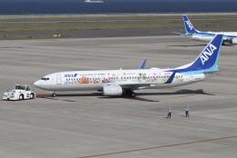 ドガースさんが、中部国際空港で撮影した全日空 737-881の航空フォト(飛行機 写真・画像)