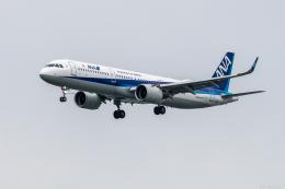 Y-Kenzoさんが、羽田空港で撮影した全日空 A321-272Nの航空フォト(飛行機 写真・画像)