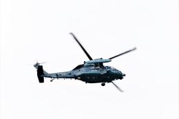 jp arrowさんが、名古屋飛行場で撮影した航空自衛隊 UH-60Jの航空フォト(飛行機 写真・画像)