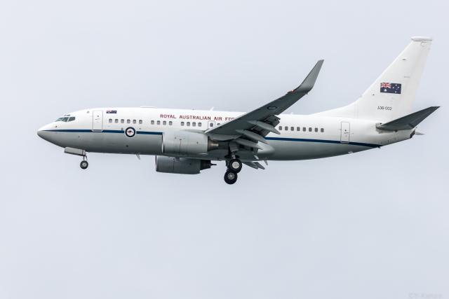 Y-Kenzoさんが、羽田空港で撮影したオーストラリア空軍 737-7DF BBJの航空フォト(飛行機 写真・画像)