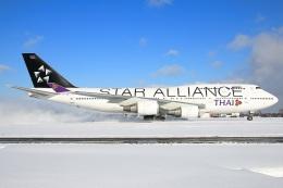 たみぃさんが、新千歳空港で撮影したタイ国際航空 747-4D7の航空フォト(飛行機 写真・画像)