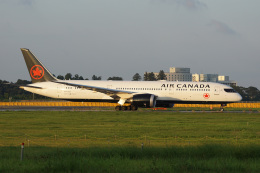神宮寺ももさんが、成田国際空港で撮影したエア・カナダ 787-9の航空フォト(飛行機 写真・画像)