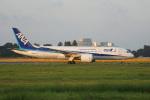 神宮寺ももさんが、成田国際空港で撮影した全日空 787-8 Dreamlinerの航空フォト(飛行機 写真・画像)