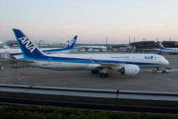じゃがさんが、成田国際空港で撮影した全日空 787-9の航空フォト(飛行機 写真・画像)