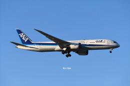 キットカットさんが、成田国際空港で撮影した全日空 787-9の航空フォト(飛行機 写真・画像)