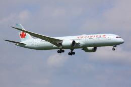 けいとパパさんが、成田国際空港で撮影したエア・カナダ 787-9の航空フォト(飛行機 写真・画像)