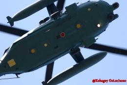 湖景さんが、茨城空港で撮影した航空自衛隊 UH-60Jの航空フォト(飛行機 写真・画像)