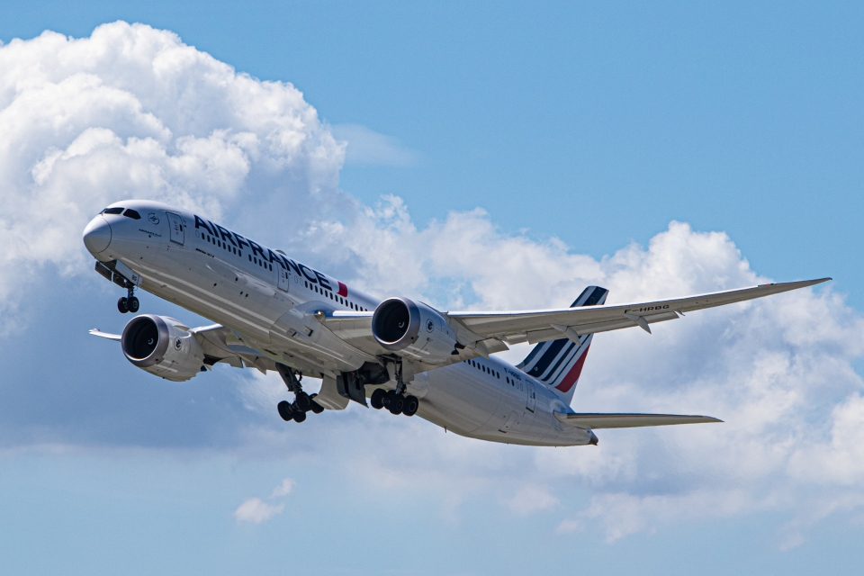 deideiさんのエールフランス航空 Boeing 787-9 (F-HRBG) 航空フォト