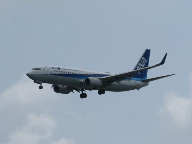 TradelView FUKUROさんが、那覇空港で撮影した全日空 737-881の航空フォト(飛行機 写真・画像)