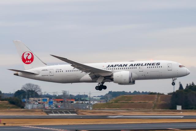 らむえあたーびんさんが、成田国際空港で撮影した日本航空 787-8 Dreamlinerの航空フォト(飛行機 写真・画像)