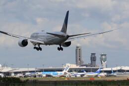 flyskyさんが、成田国際空港で撮影したユナイテッド航空 787-8 Dreamlinerの航空フォト(飛行機 写真・画像)
