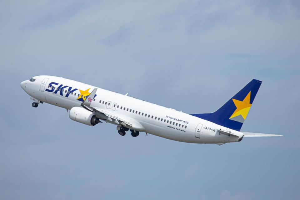 SGR RT 改さんのスカイマーク Boeing 737-800 (JA73AA) 航空フォト