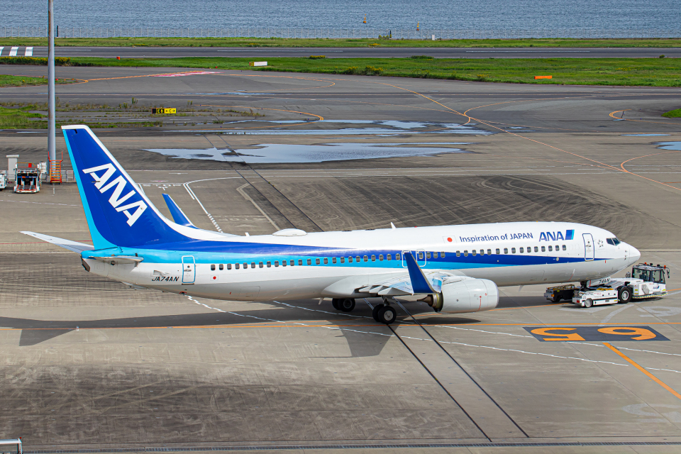SGR RT 改さんの全日空 Boeing 737-800 (JA74AN) 航空フォト