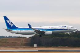 らむえあたーびんさんが、成田国際空港で撮影した全日空 737-881の航空フォト(飛行機 写真・画像)