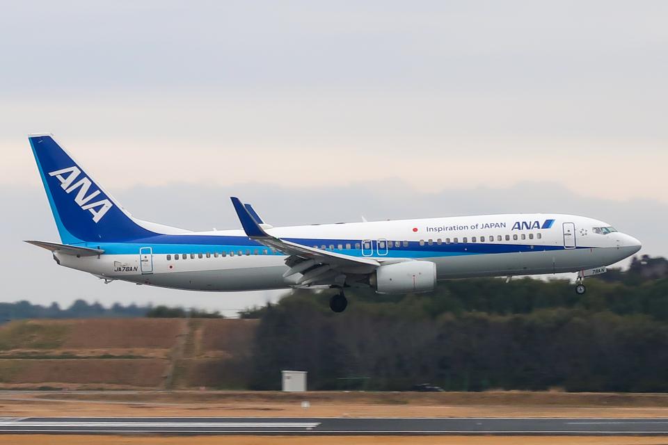 らむえあたーびんさんの全日空 Boeing 737-800 (JA78AN) 航空フォト