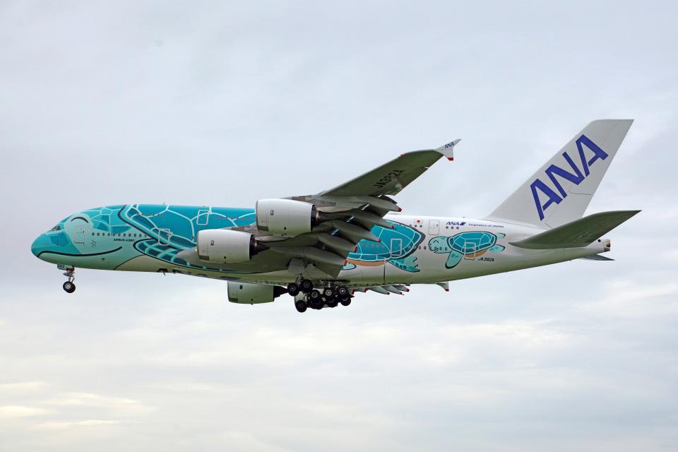 ちゃぽんさんの全日空 Airbus A380 (JA382A) 航空フォト