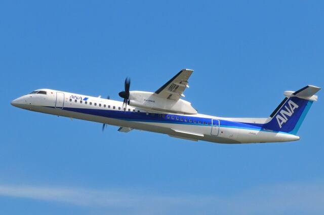 シグナス021さんが、羽田空港で撮影したANAウイングス DHC-8-402Q Dash 8の航空フォト(飛行機 写真・画像)