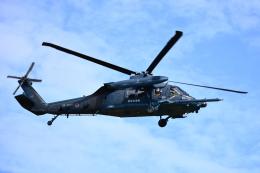 せせらぎさんが、浜松基地で撮影した航空自衛隊 UH-60Jの航空フォト(飛行機 写真・画像)