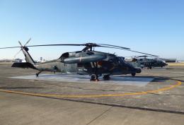masahiさんが、名古屋飛行場で撮影した航空自衛隊 UH-60Jの航空フォト(飛行機 写真・画像)