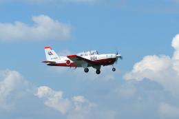 masahiさんが、静浜飛行場で撮影した航空自衛隊 T-7の航空フォト(飛行機 写真・画像)