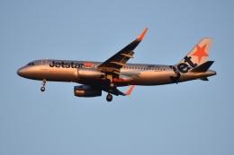 Izumixさんが、成田国際空港で撮影したジェットスター・ジャパン A320-232の航空フォト(飛行機 写真・画像)