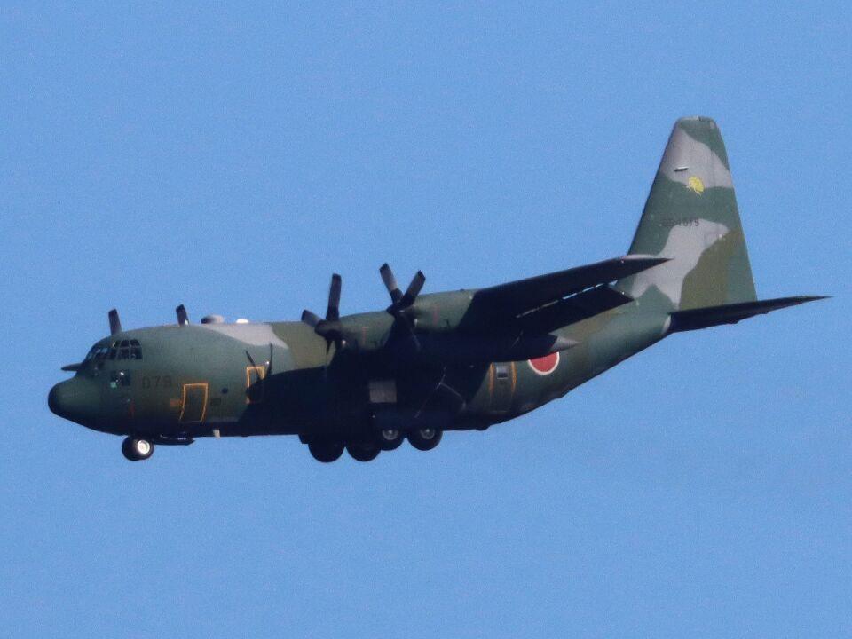 丸めがねさんの航空自衛隊 Lockheed C-130 Hercules (85-1079) 航空フォト