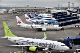 MSN/PFさんが、中部国際空港で撮影したソラシド エア 737-81Dの航空フォト(飛行機 写真・画像)