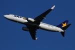 twining07さんが、羽田空港で撮影したスカイマーク 737-8HXの航空フォト(飛行機 写真・画像)