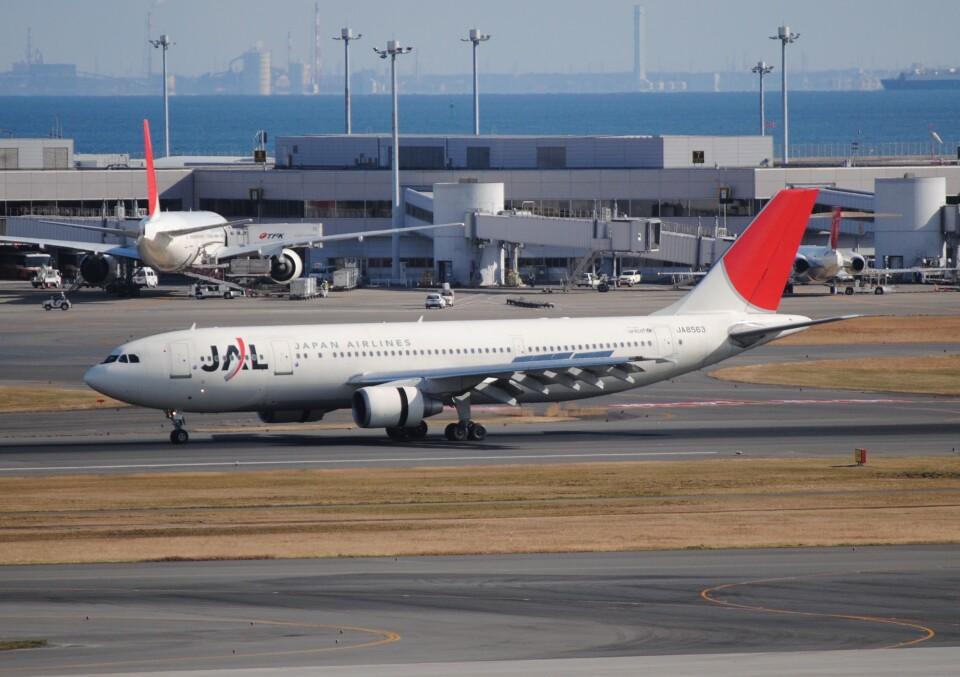 LEGACY-747さんの日本航空 Airbus A300-600 (JA8563) 航空フォト
