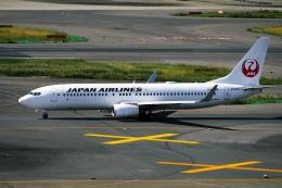 DVDさんが、羽田空港で撮影した日本航空 737-846の航空フォト(飛行機 写真・画像)