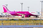 ぬるぽさんが、関西国際空港で撮影したピーチ A320-251Nの航空フォト(飛行機 写真・画像)