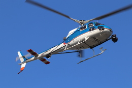 KAZFLYERさんが、東京ヘリポートで撮影したアカギヘリコプター AS350B1 Ecureuilの航空フォト(飛行機 写真・画像)