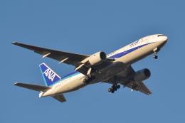 sukiさんが、羽田空港で撮影した全日空 777-281/ERの航空フォト(飛行機 写真・画像)