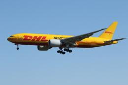ゴンタさんが、成田国際空港で撮影したDHL 777-FZNの航空フォト(飛行機 写真・画像)