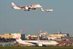 シグナス021さんが、羽田空港で撮影した日本航空 777-289の航空フォト(飛行機 写真・画像)