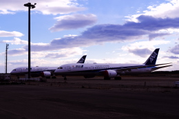 sskm1974さんが、新千歳空港で撮影した全日空 787-9の航空フォト(飛行機 写真・画像)