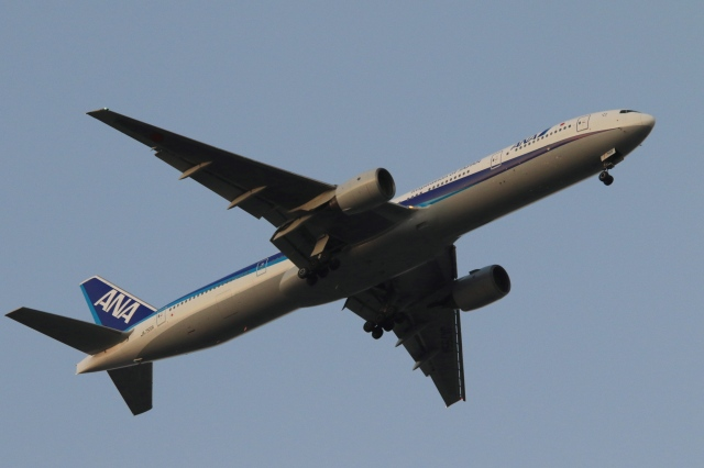 Hiro-hiroさんが、羽田空港で撮影した全日空 777-381の航空フォト(飛行機 写真・画像)