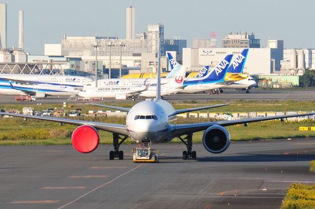 シグナス021さんが、羽田空港で撮影した全日空 777-381/ERの航空フォト(飛行機 写真・画像)