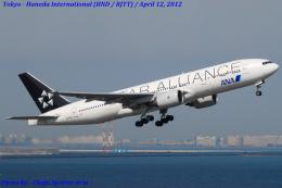 Chofu Spotter Ariaさんが、羽田空港で撮影した全日空 777-281の航空フォト(飛行機 写真・画像)